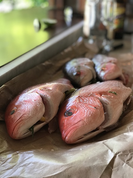 塩締めとは?ささみや真鯛の旨味を簡単に倍増させる方法はこれ!